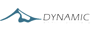 Dynamic Avalanche Consulting